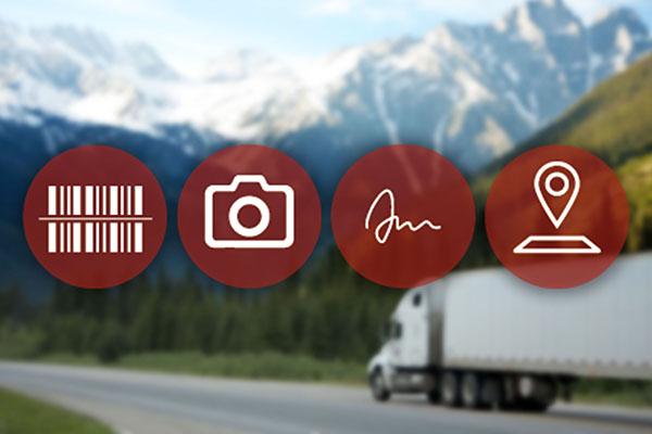 Springboard Delivery app