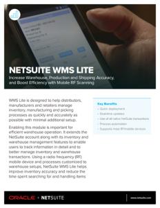 NetSuite Lite WP Image2